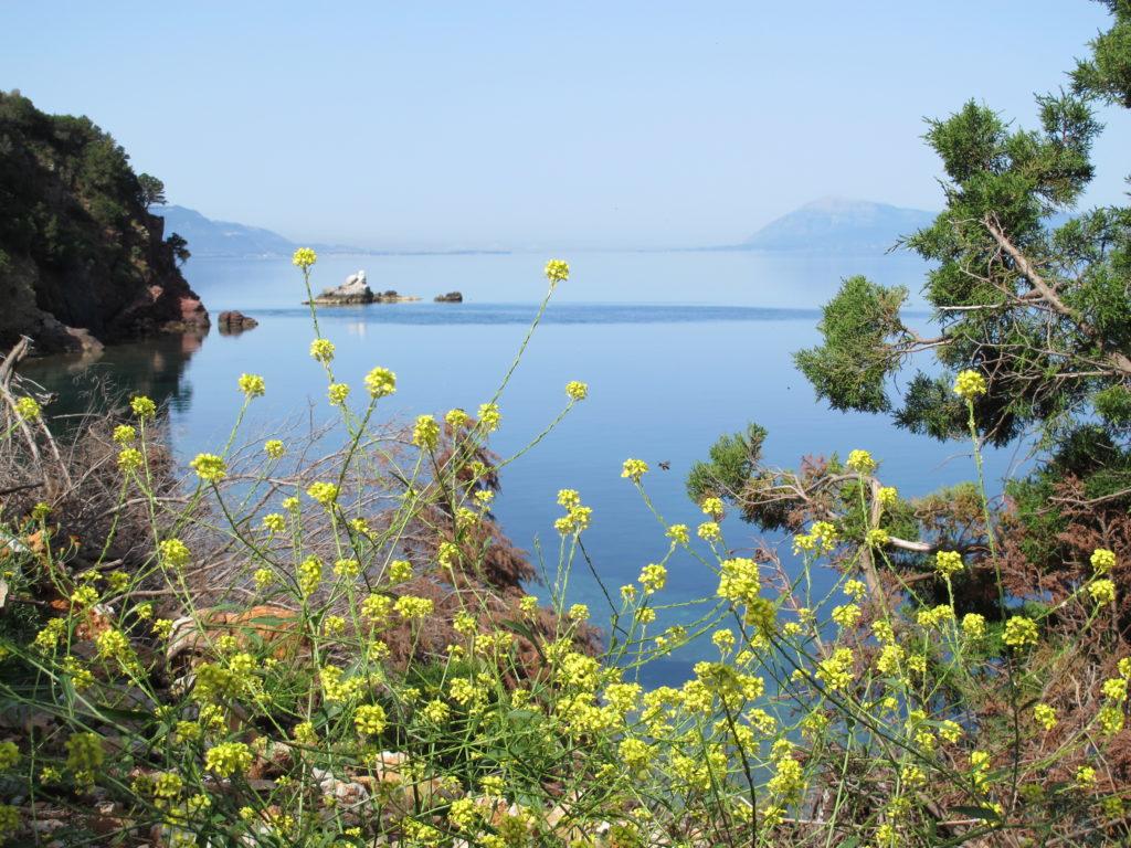 Smuk udsigt fra Nisis Trizonia. Nul vind!